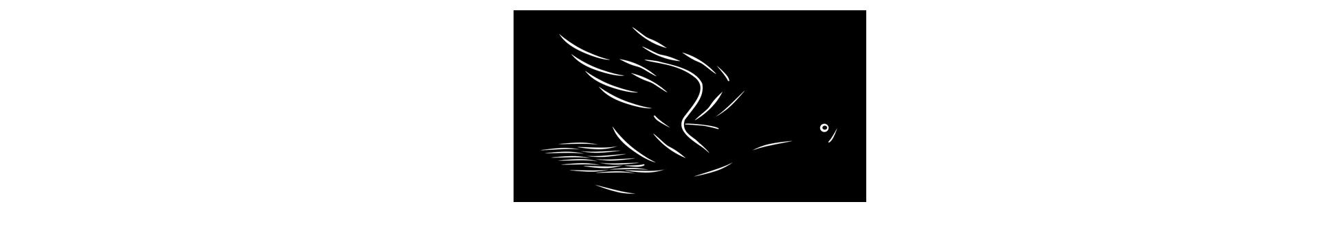 repülő kacsa